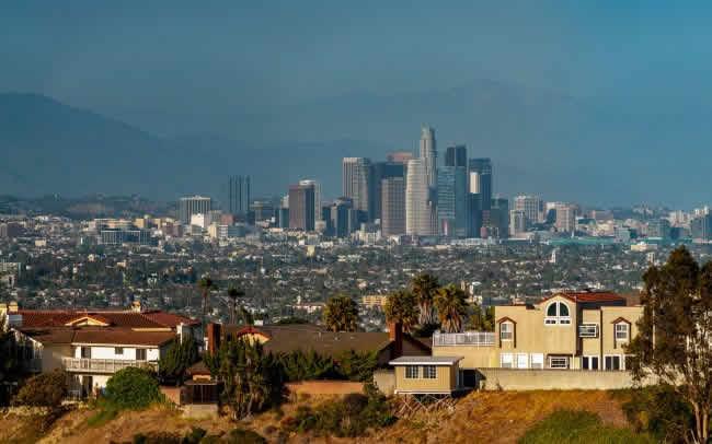 Los Angeles 2012 50 X 107 cm